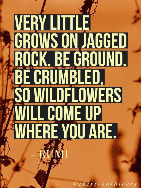 Rumi Quote Thirteen Thieves Blog