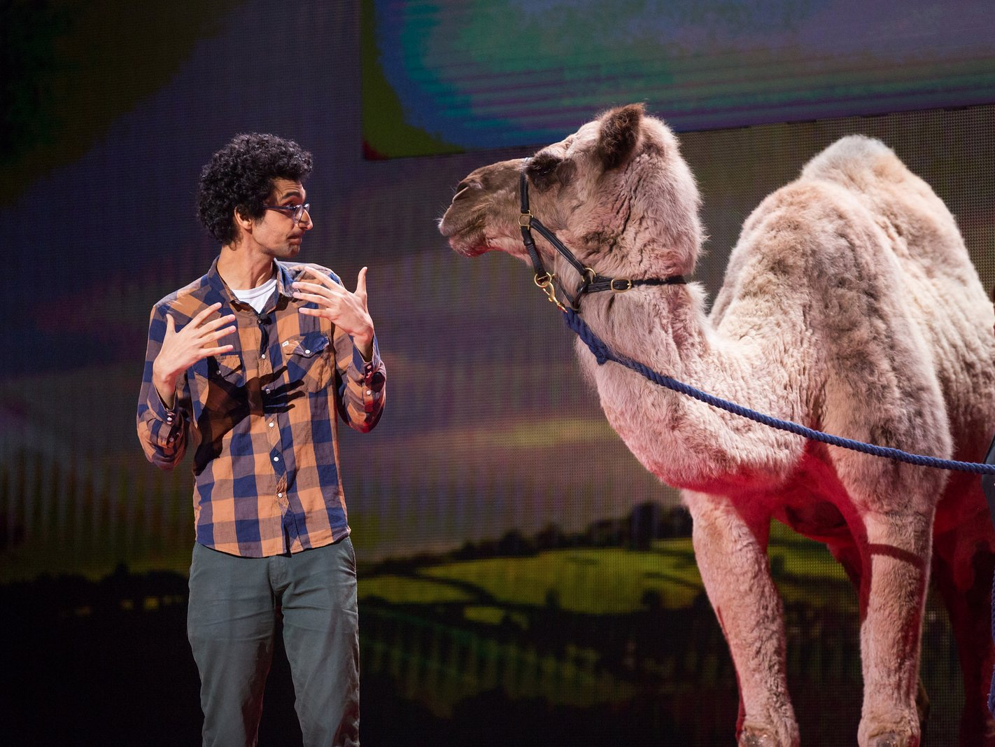 """TED Talk """"You have no idea where camels came from"""" - Latif Nasser"""