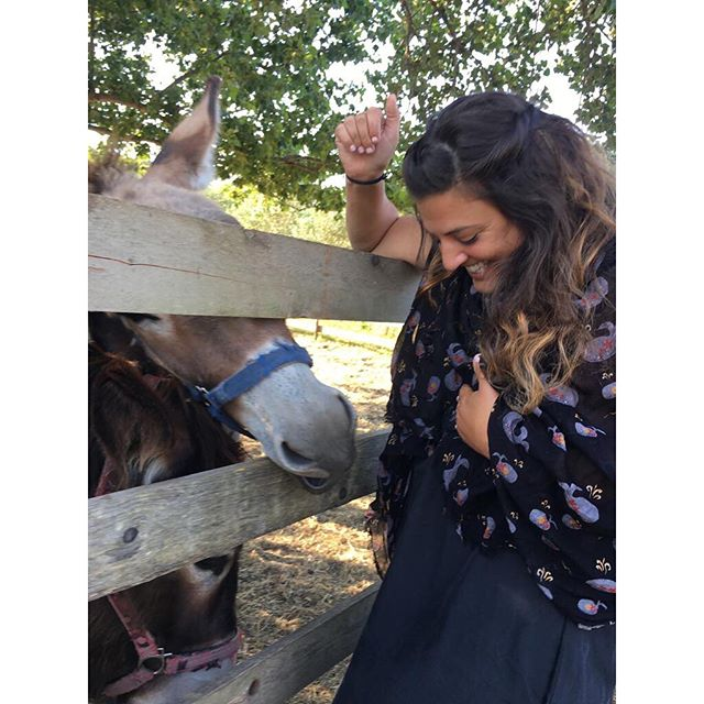 Last week, a donkey bit my tit. Let's hope this week is better. ✨
