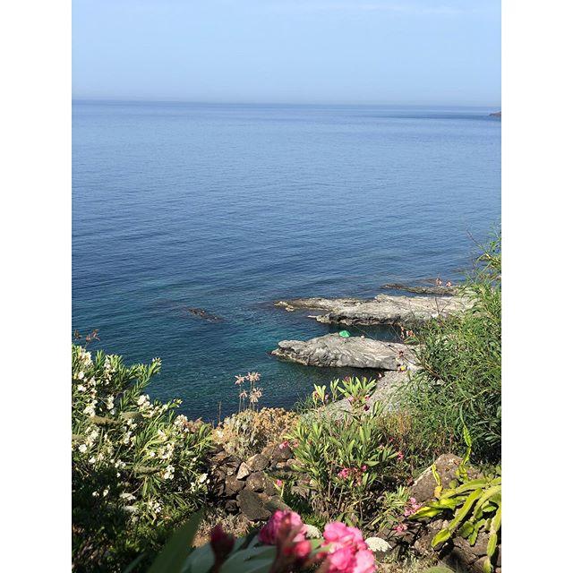 deep blue sea, all for me. 🐟 | Pantelleria, Sicily #casedelprincipepantelleria . . . . .#thediscoverer #itsbeautifulhere #travelinsiders #traveldeeper #whatsicilyis #entirelifestyle #wildernessmakesyoubetter #itsawildworld #theglobewanderer #exploremore #thehappynow #SUITCASEtravels #foodandwineitalia #ilovepantelleria #snacksicily #bytravelersfortravelers #Pantelleria