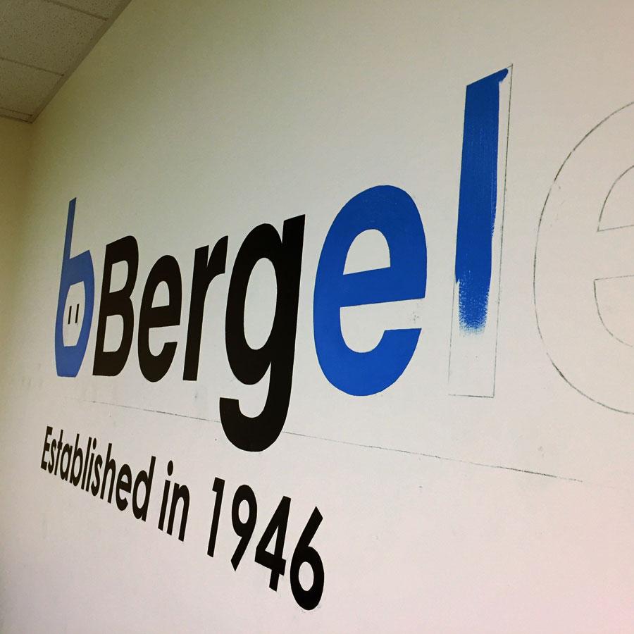 bergelectic900.jpg