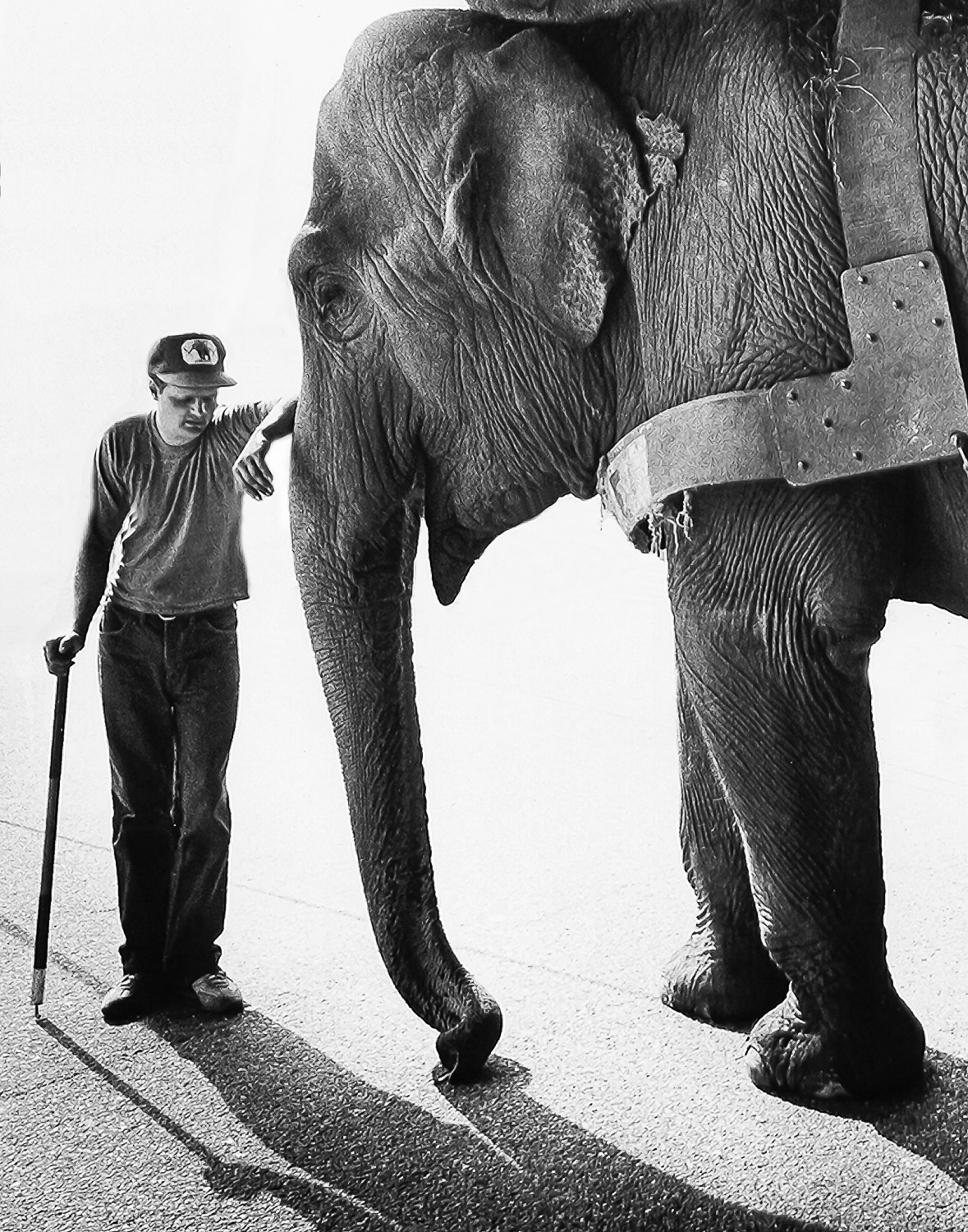 Elephant-And-TrainerLeans-Against-Trunk-BW.jpg