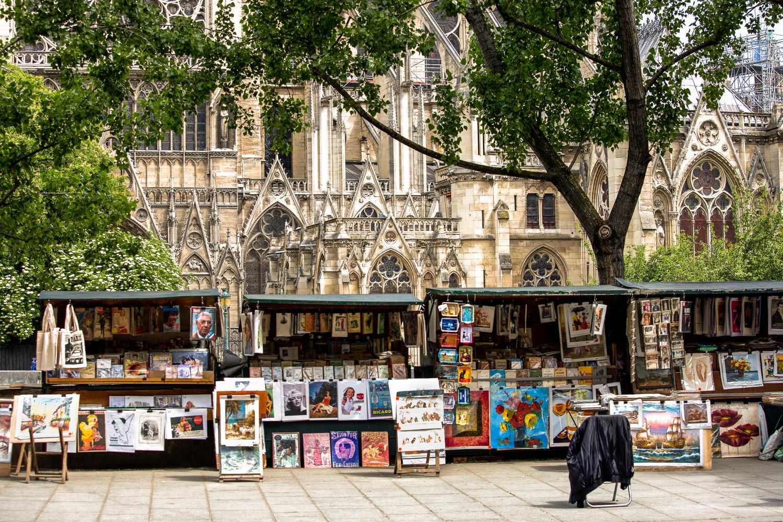 Sales-Art-Notre-Dame-Behind.jpg