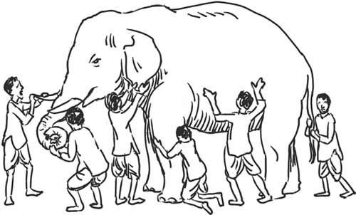 Blind Men Building Models of an Elephant