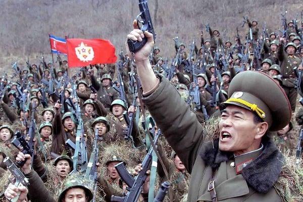 North Korean Arm