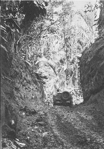 Trail near Zanana Beach, New Georgia, showing the difficult terrain (Source: Cartwheel: the Reduction of Rabaul)