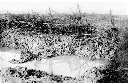 Barbed wire at Beaumont Hamel, 1916. (Newfoundland and Labrador in the First World War)