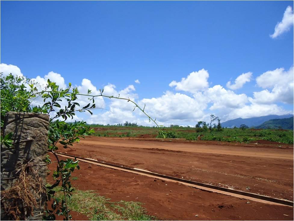 Author's photo, Vietnam battlefield study, Khe Sanh, 2010.