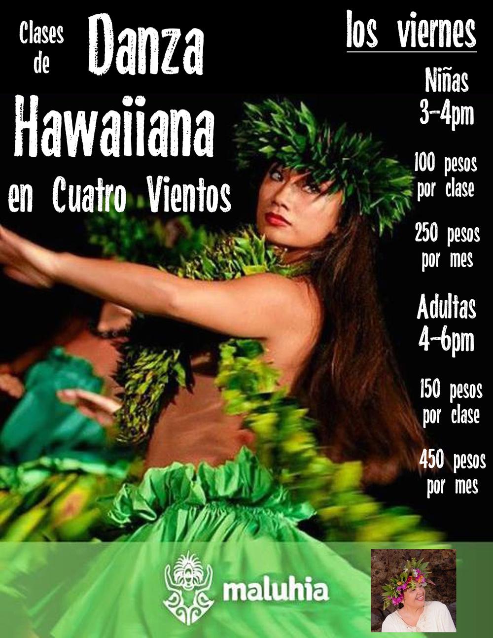 hawaian dance-web.jpg