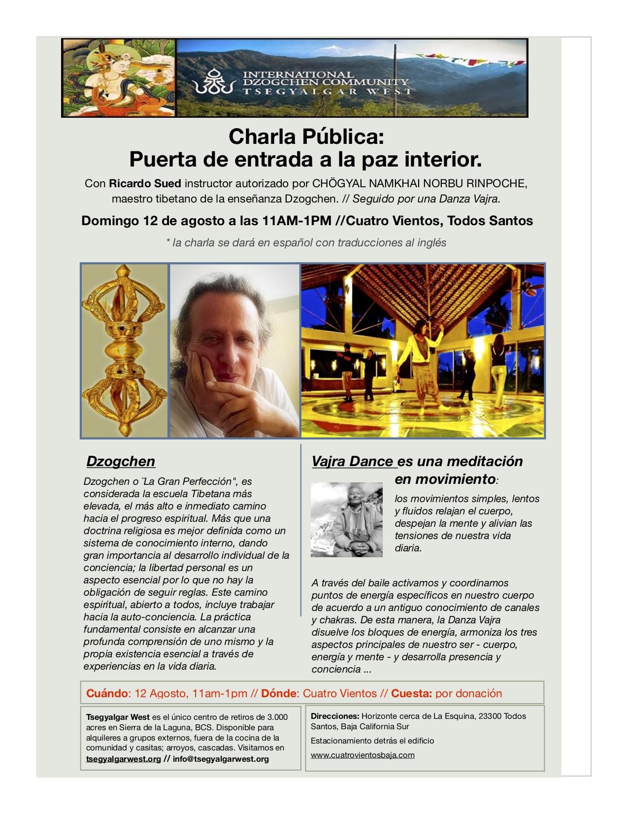 Ricardo Suede Workshop espanol.jpg