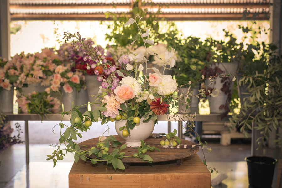 The little petunia arrangement at b-side farm - roger elliot photography