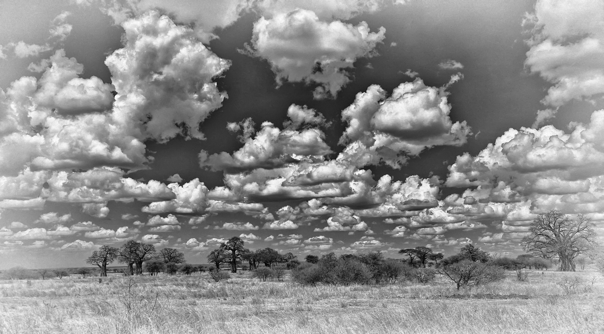 Serengeti Clouds 2