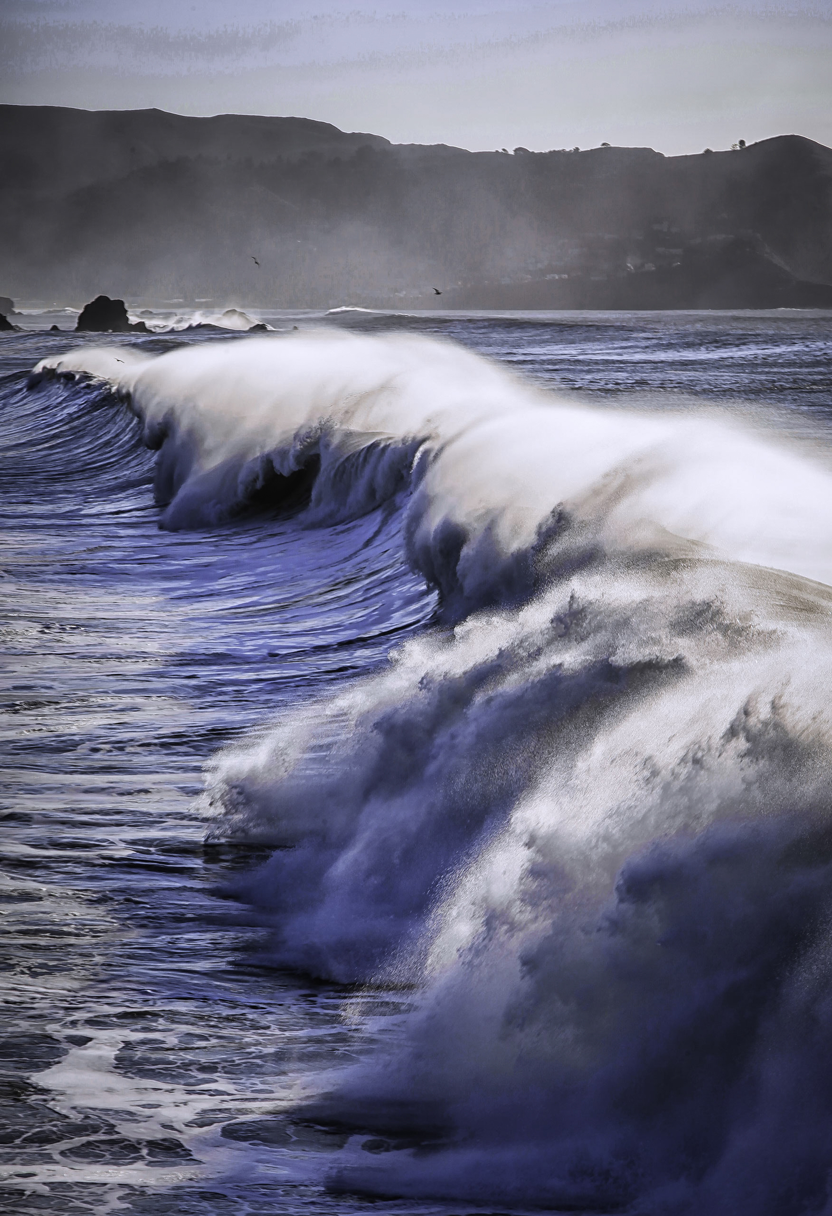 Pacifica Wave