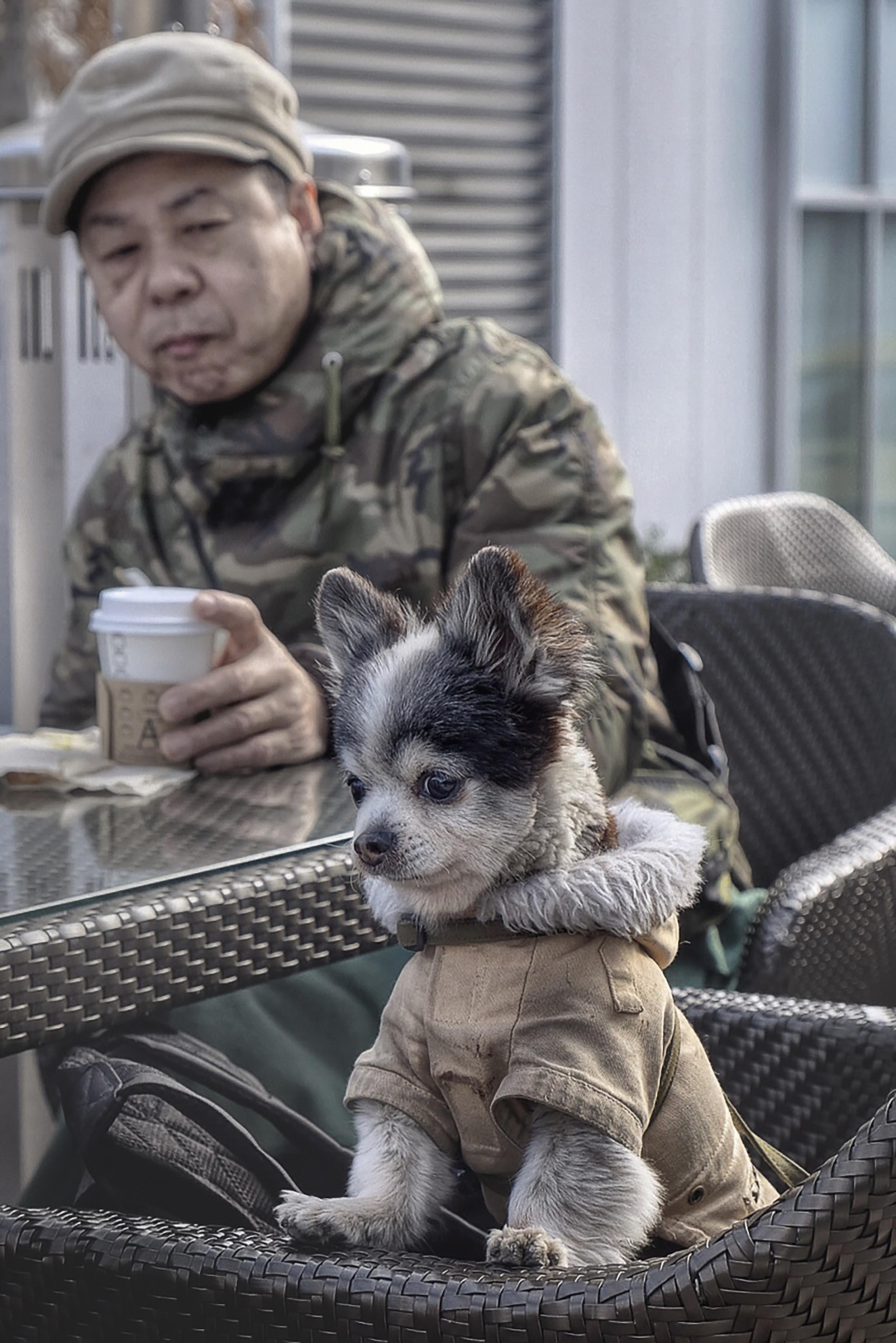 Starbuck's Mascot