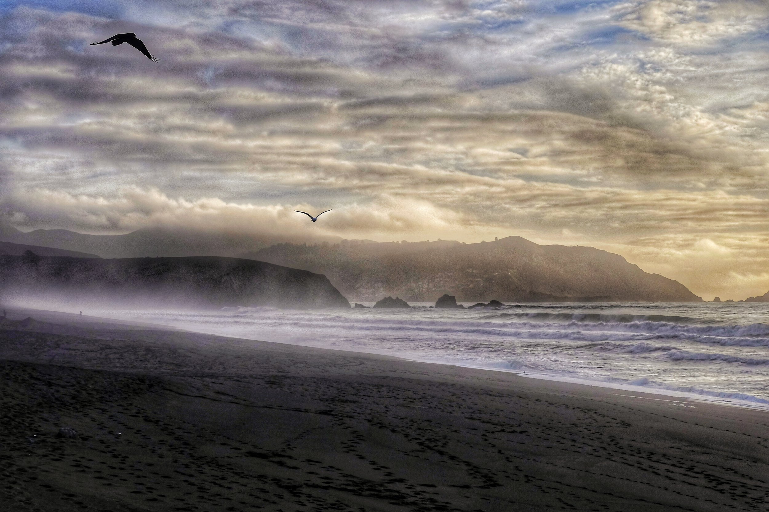 Pacifica Storm 2