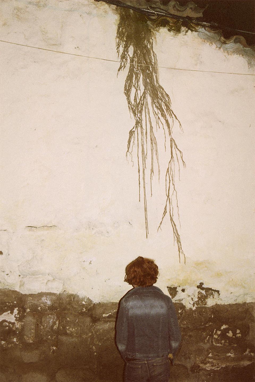 wall-drip-11-25-09.jpg
