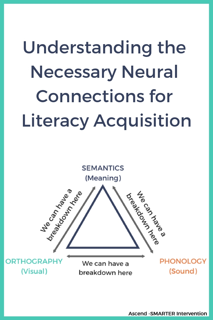 Understanding the necessary neutral connections for literacy aquisition.jpg