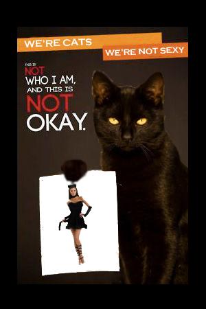 cat costume 1.jpg