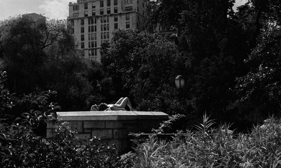Sun_bathing_in_the_park.jpg