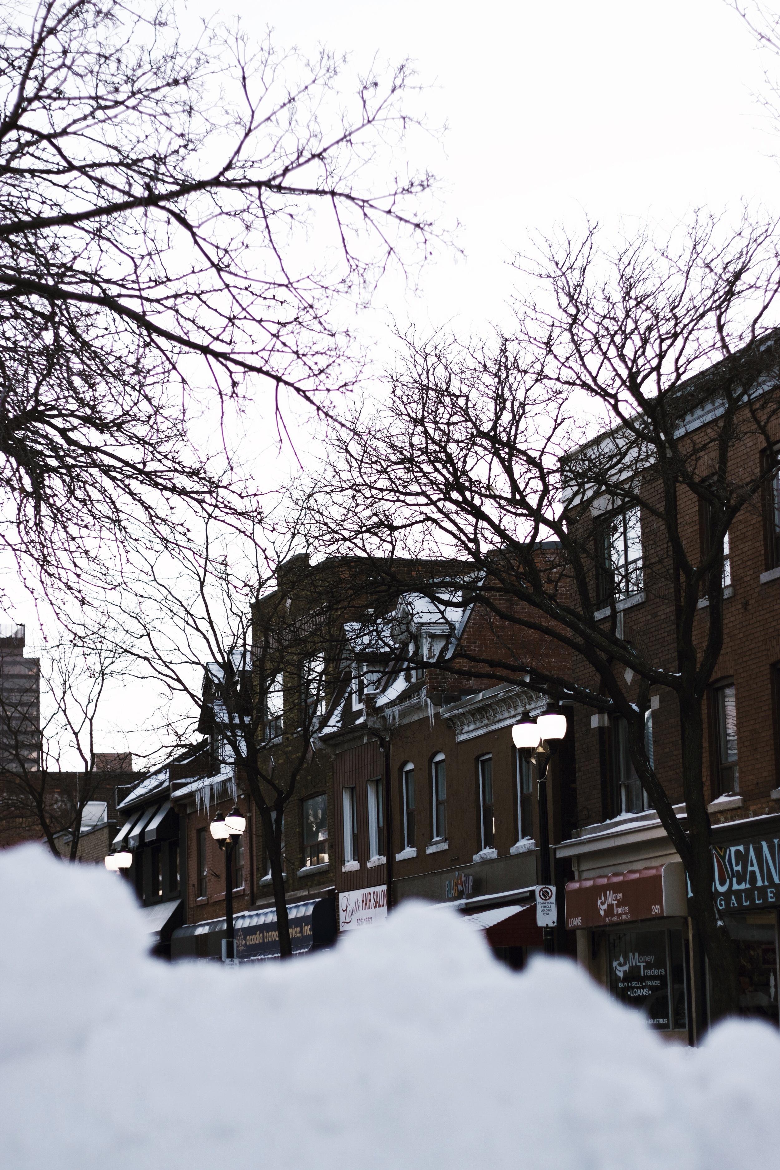 Hamilton buildings in my hood.