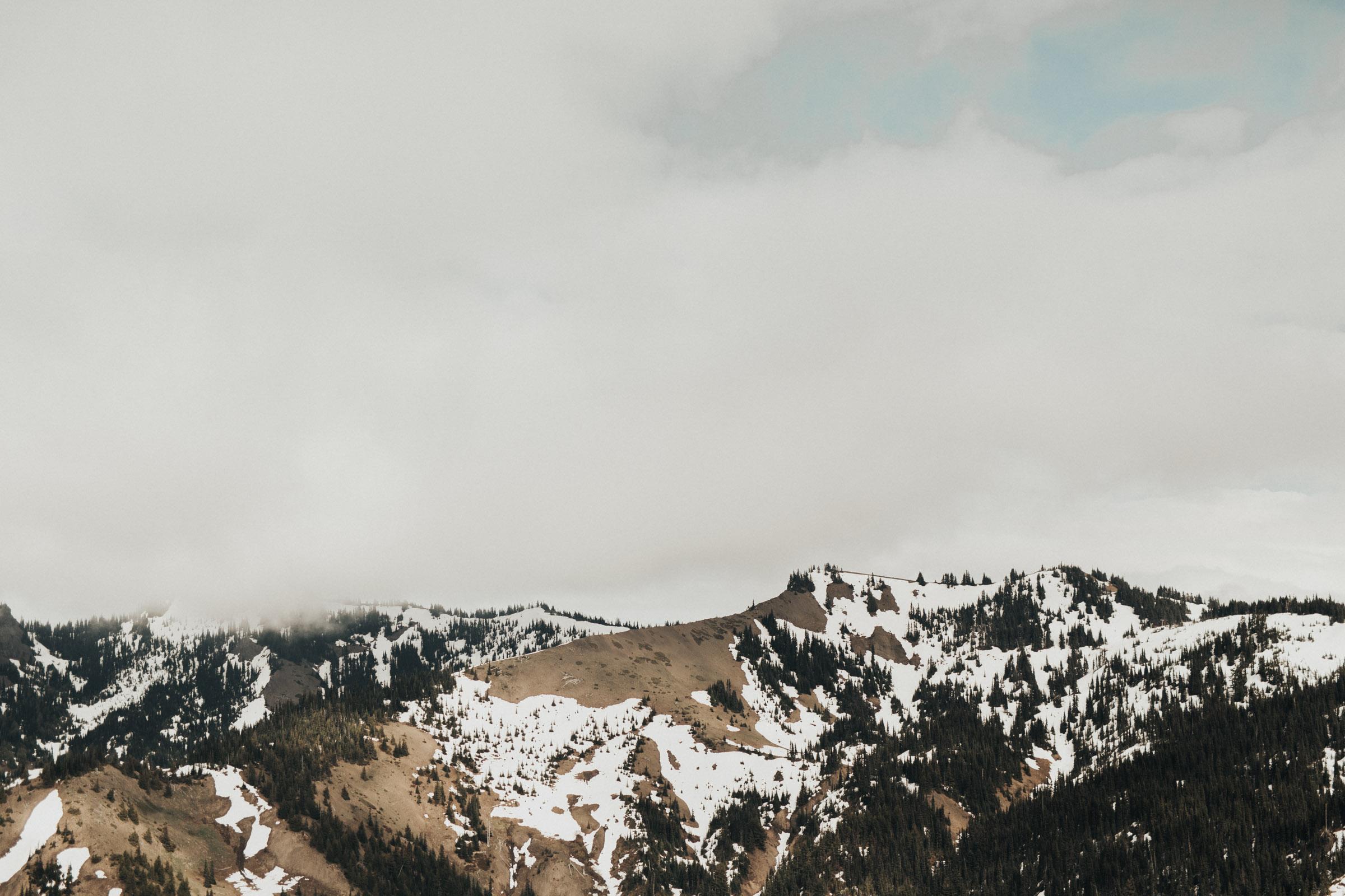 Marcella Laine Hurricane Ridge Bridals-2900.jpg