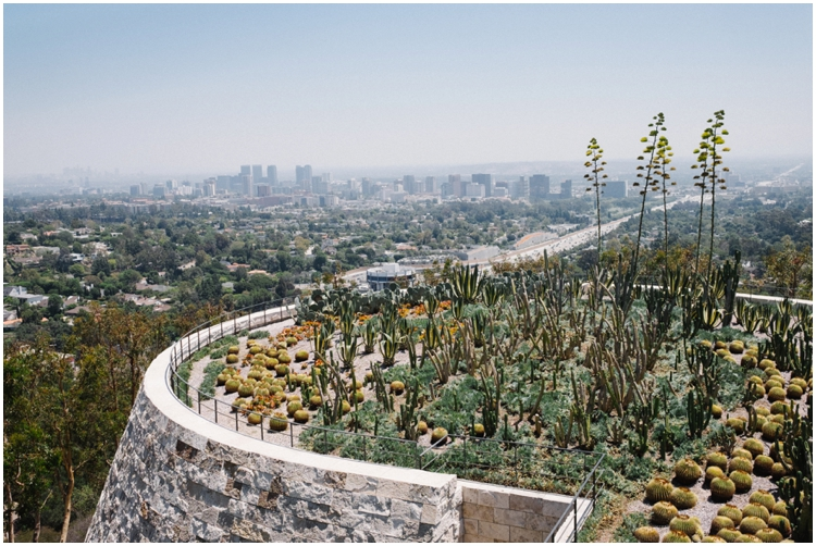 Esther & Robert (25 of 80)_getty-museum-proposal-los-angeles-ca.jpg