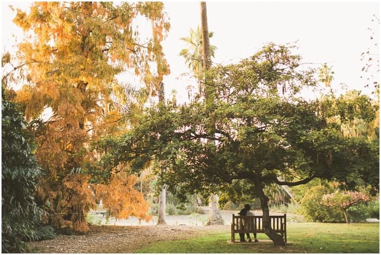 Jasmin_Edmund_Arboretum_Engagement_Shoot_0037.jpg