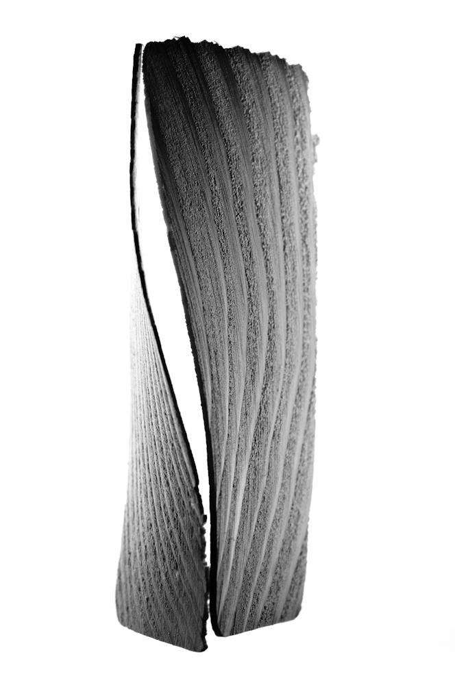 wood-061.jpg