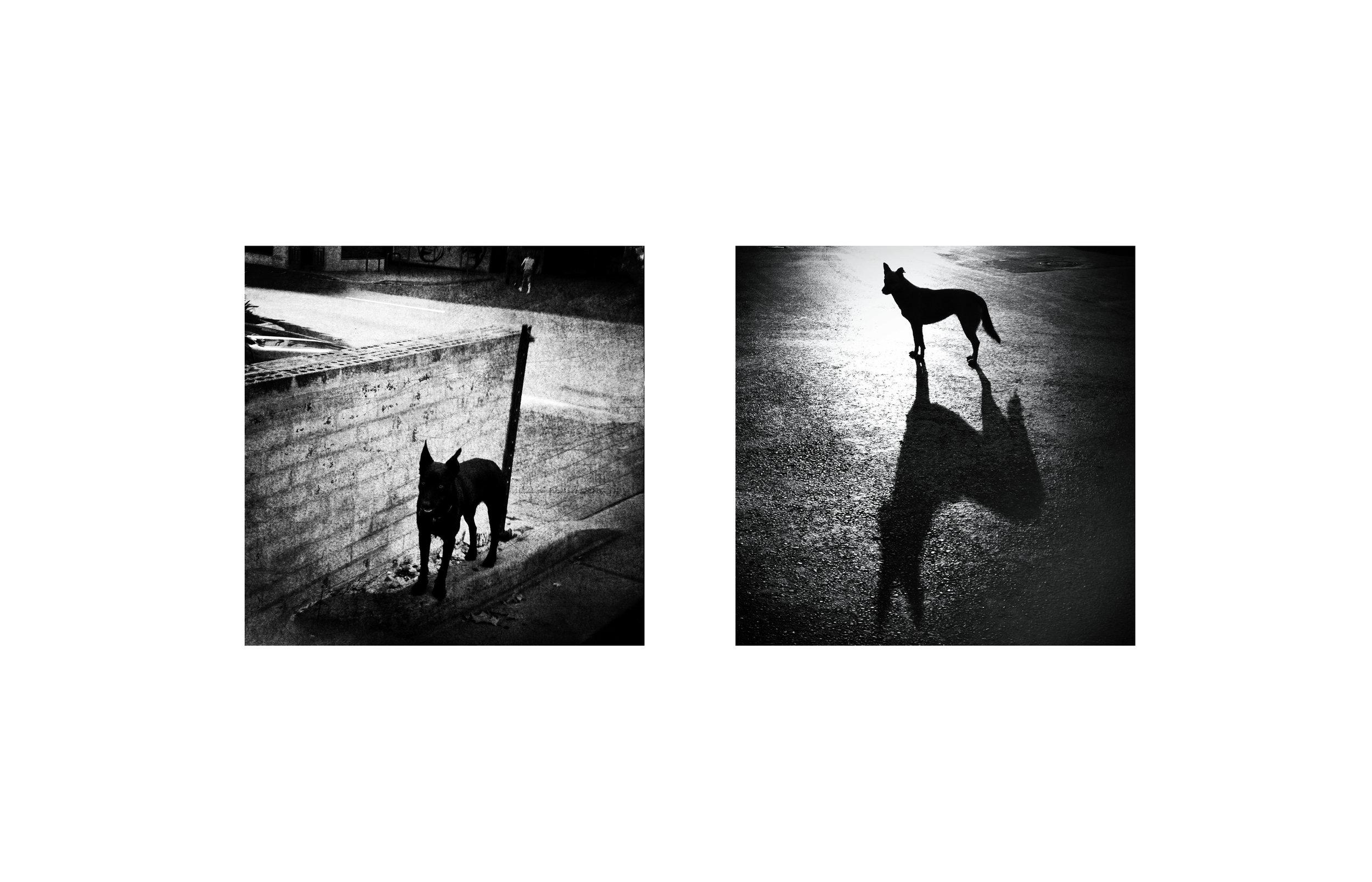Mirrored_Andersen_Suyabatmaz4.jpg