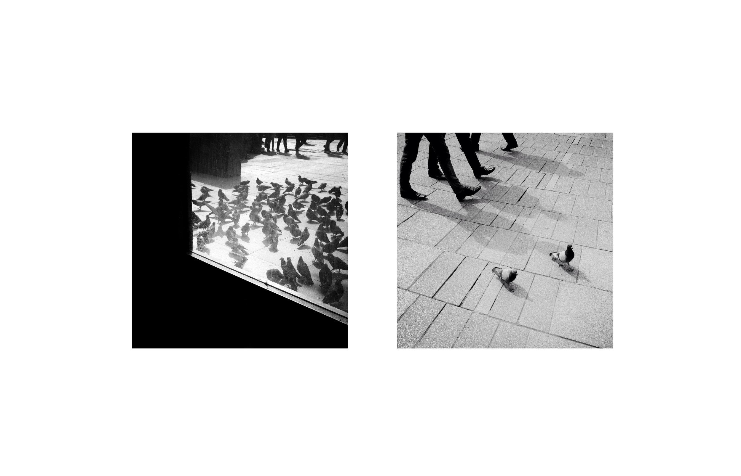 Mirrored_Andersen_Suyabatmaz31.jpg