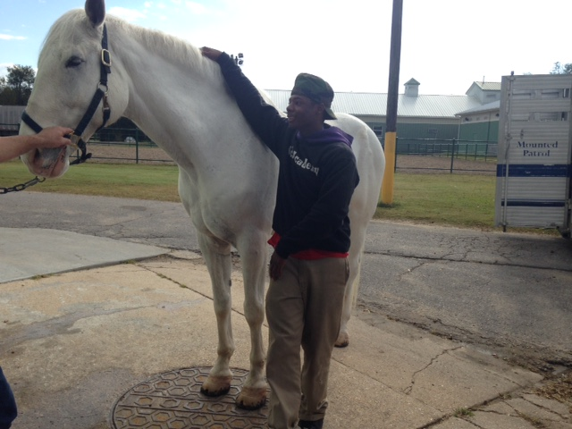 Sci Academy students visit the NOPD Mounted Unit stables in New Orleans City Park.