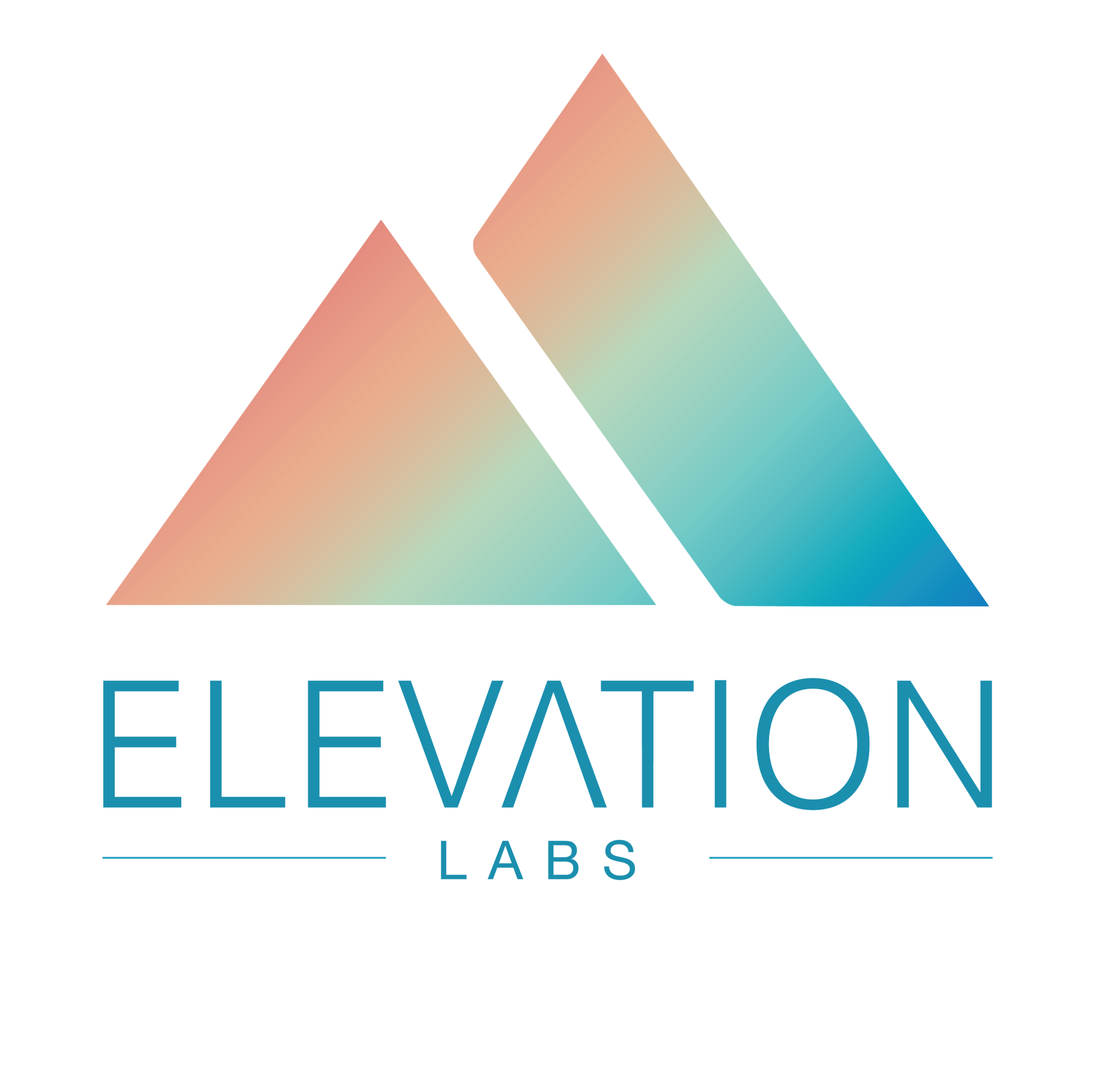 Dark_Elevation Labs 2018-01.png