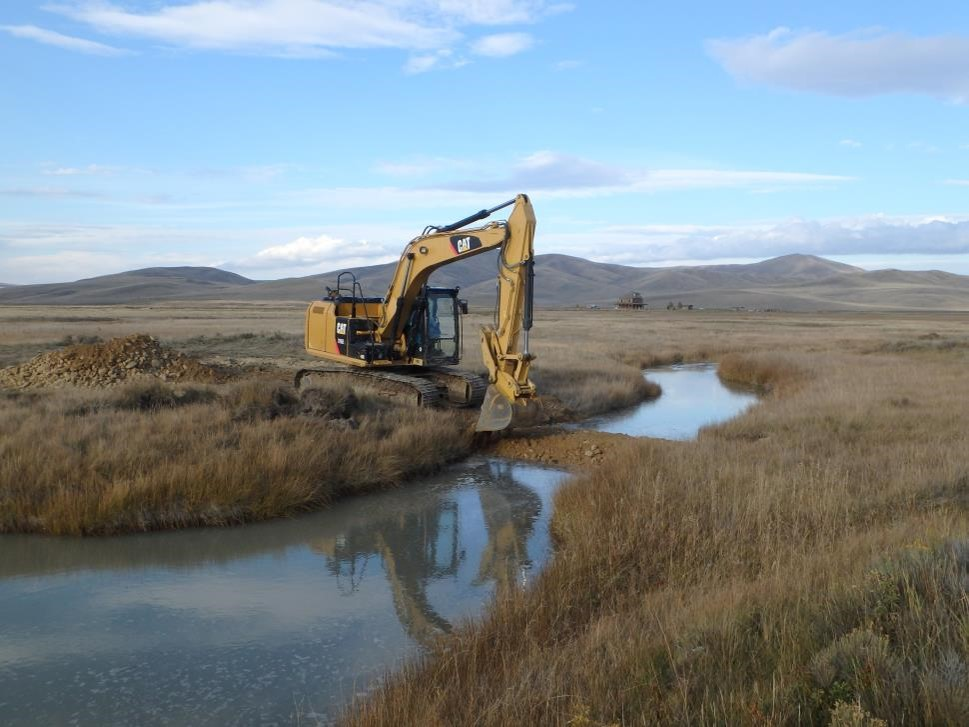 Beaver mimicry restoration construction in the Centennial valley