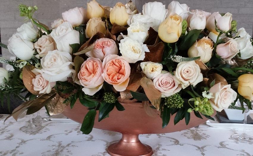 garden rose splendor.jpg