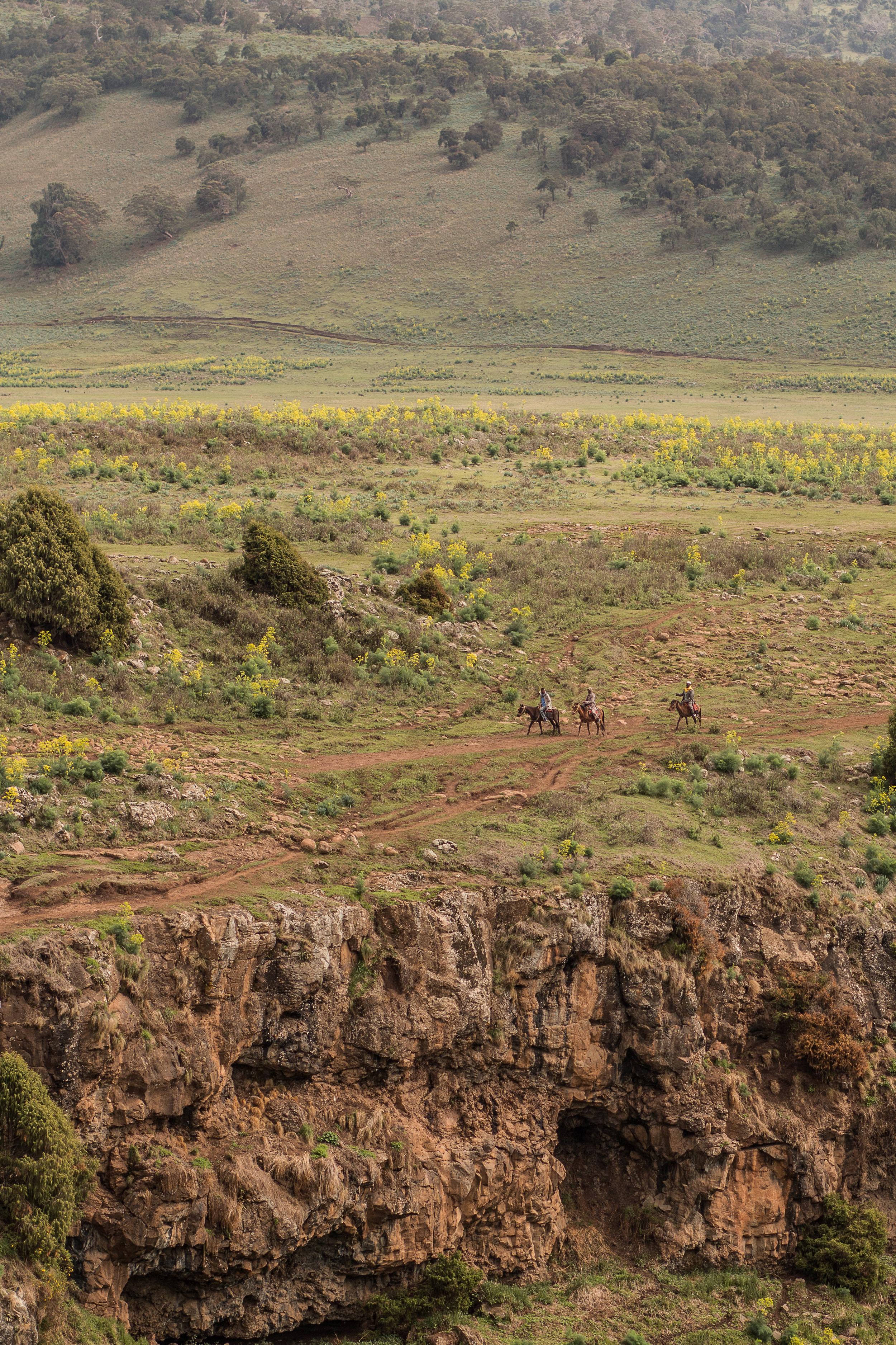 ethiopia-8780.JPG