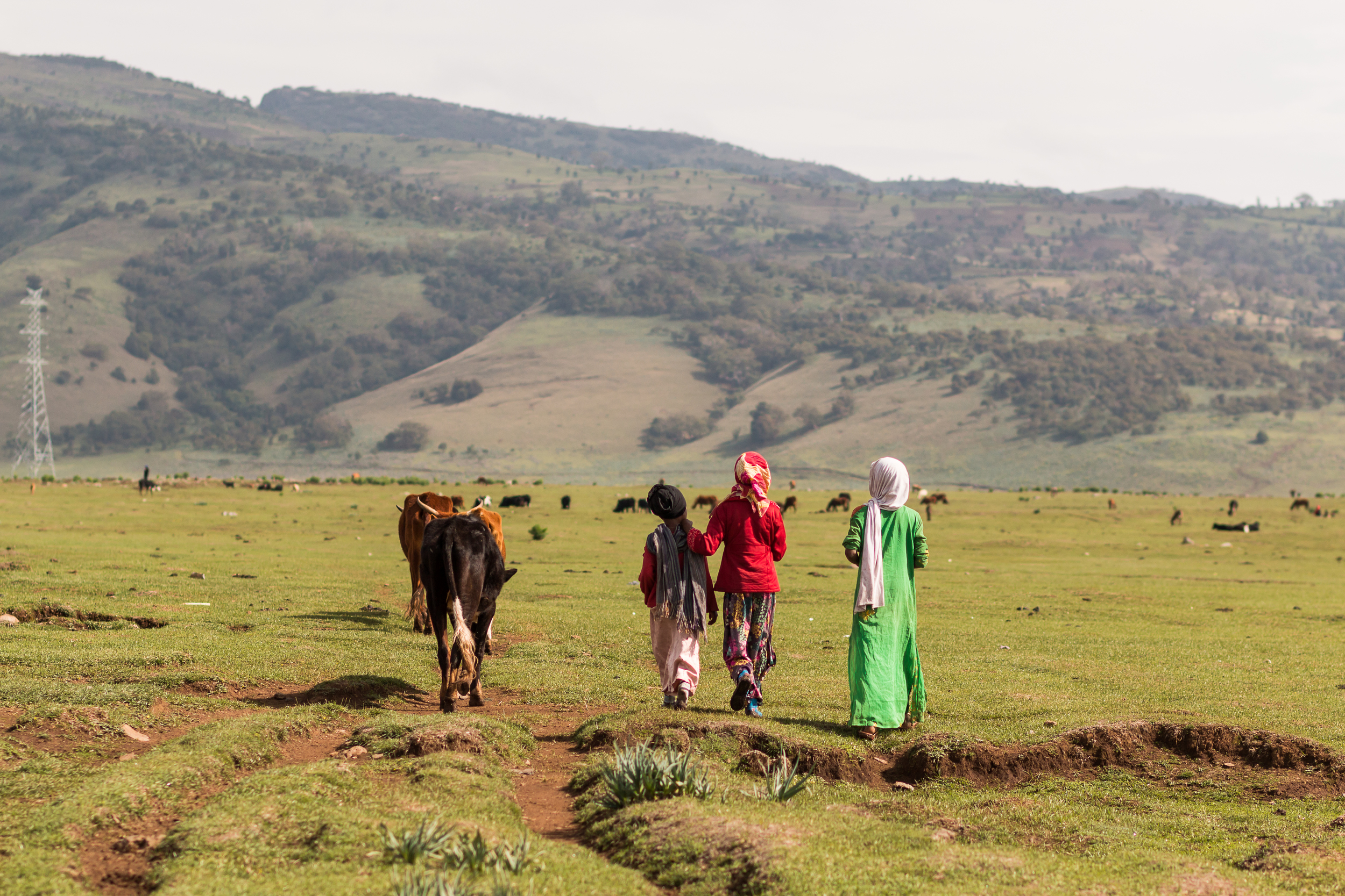 ethiopia-8745.JPG
