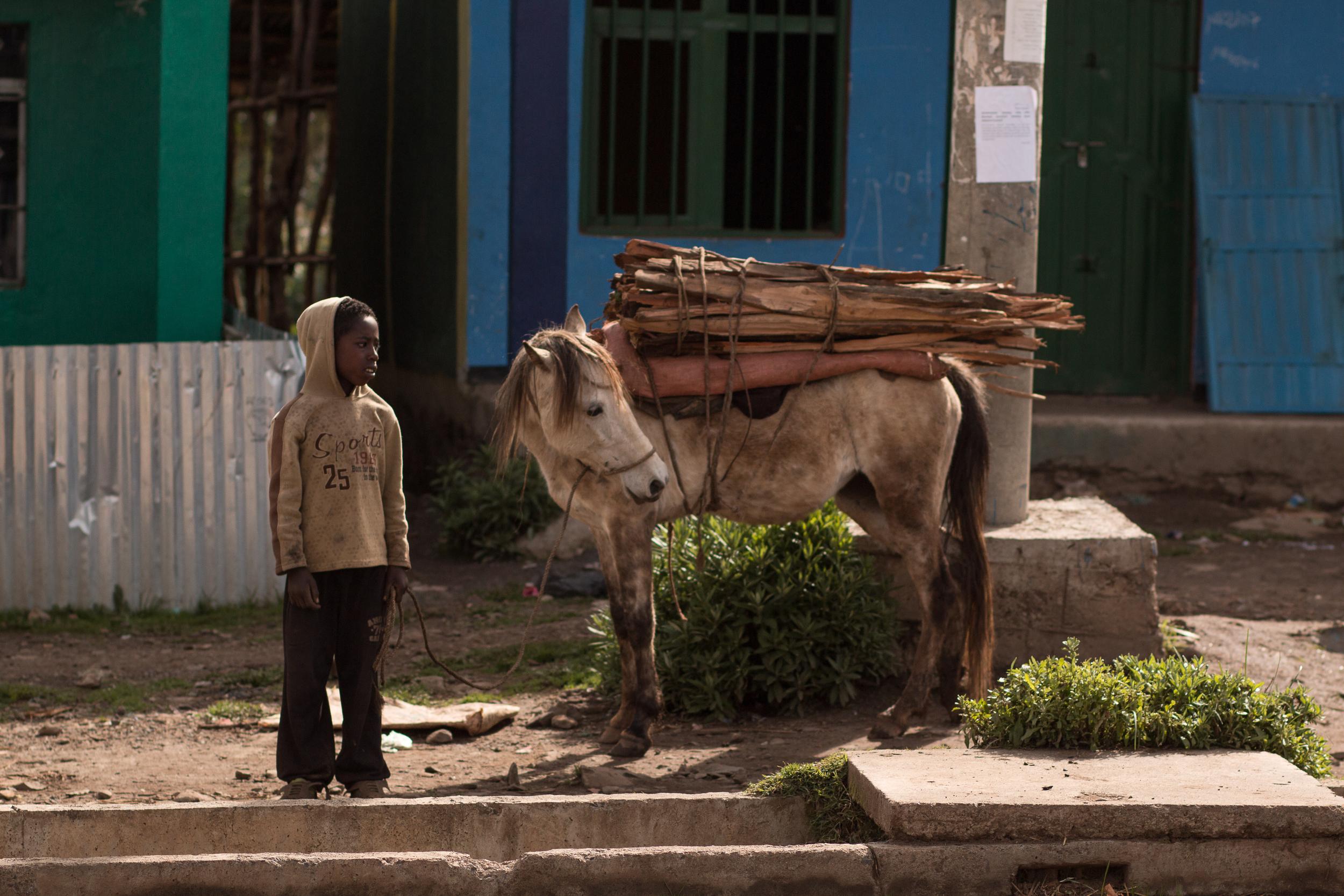 ethiopia-8719.JPG