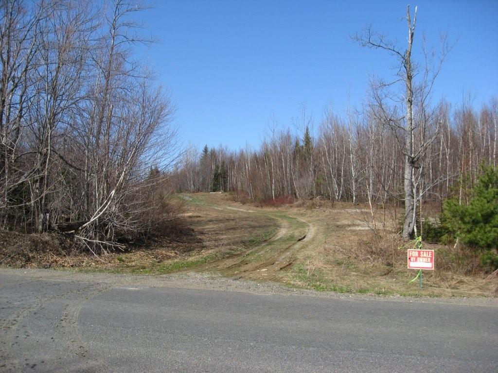 entrance from harris hill.jpg