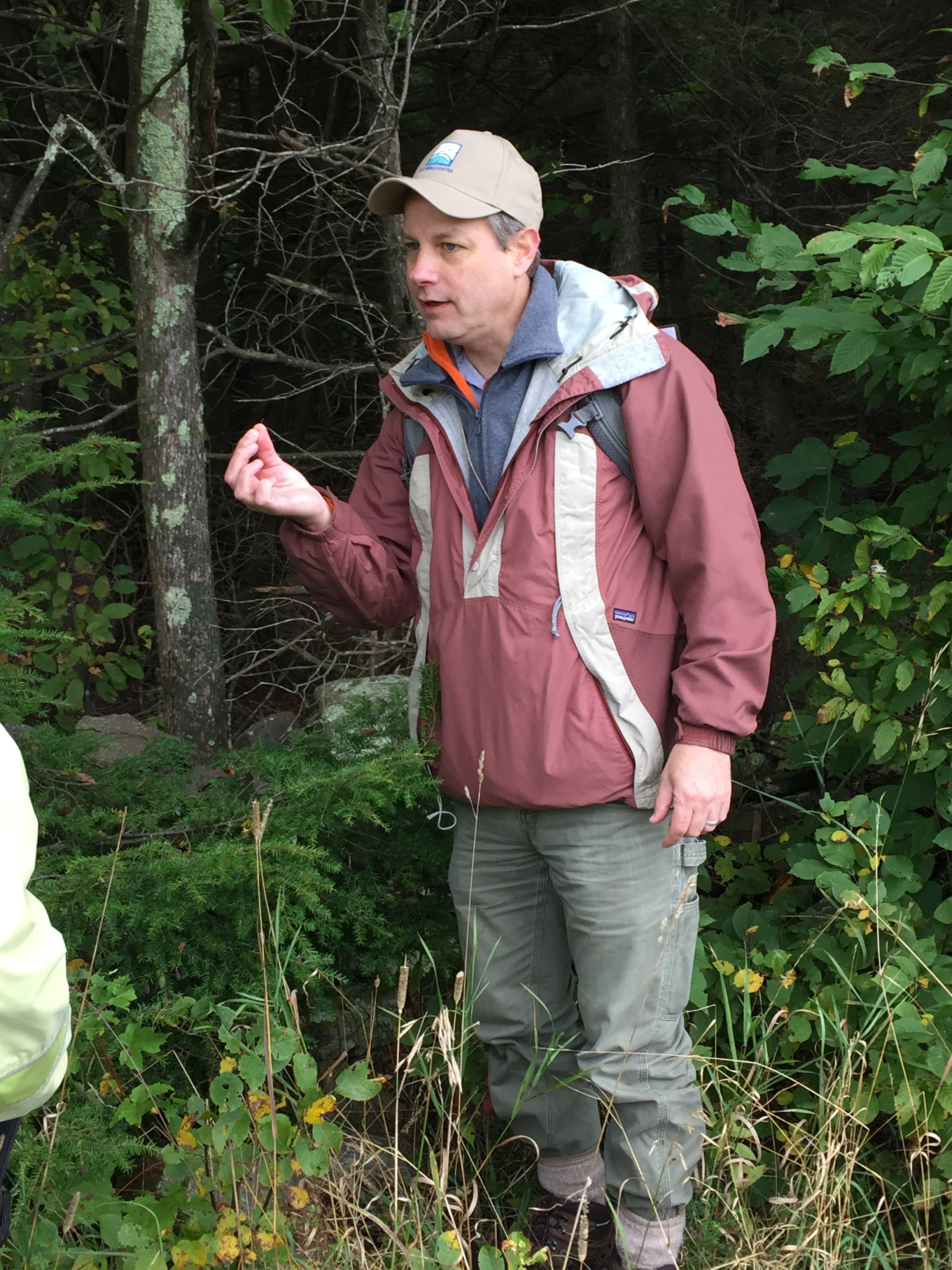 Catskill Regional Invasive Species Partnership Coordinator, John Thompson examines a Hemlock