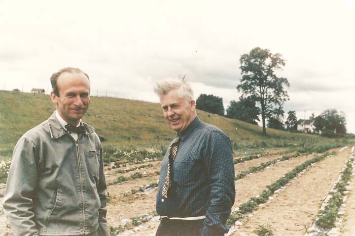 Sherret S. Chase standing with Henry A. Wallace in Wallace's hybrid strawberry field in South Salem, NY. Wallace, who bred corn, strawberries, irises, gladiolas, and poultry, served as FDR's vice president for two terms.