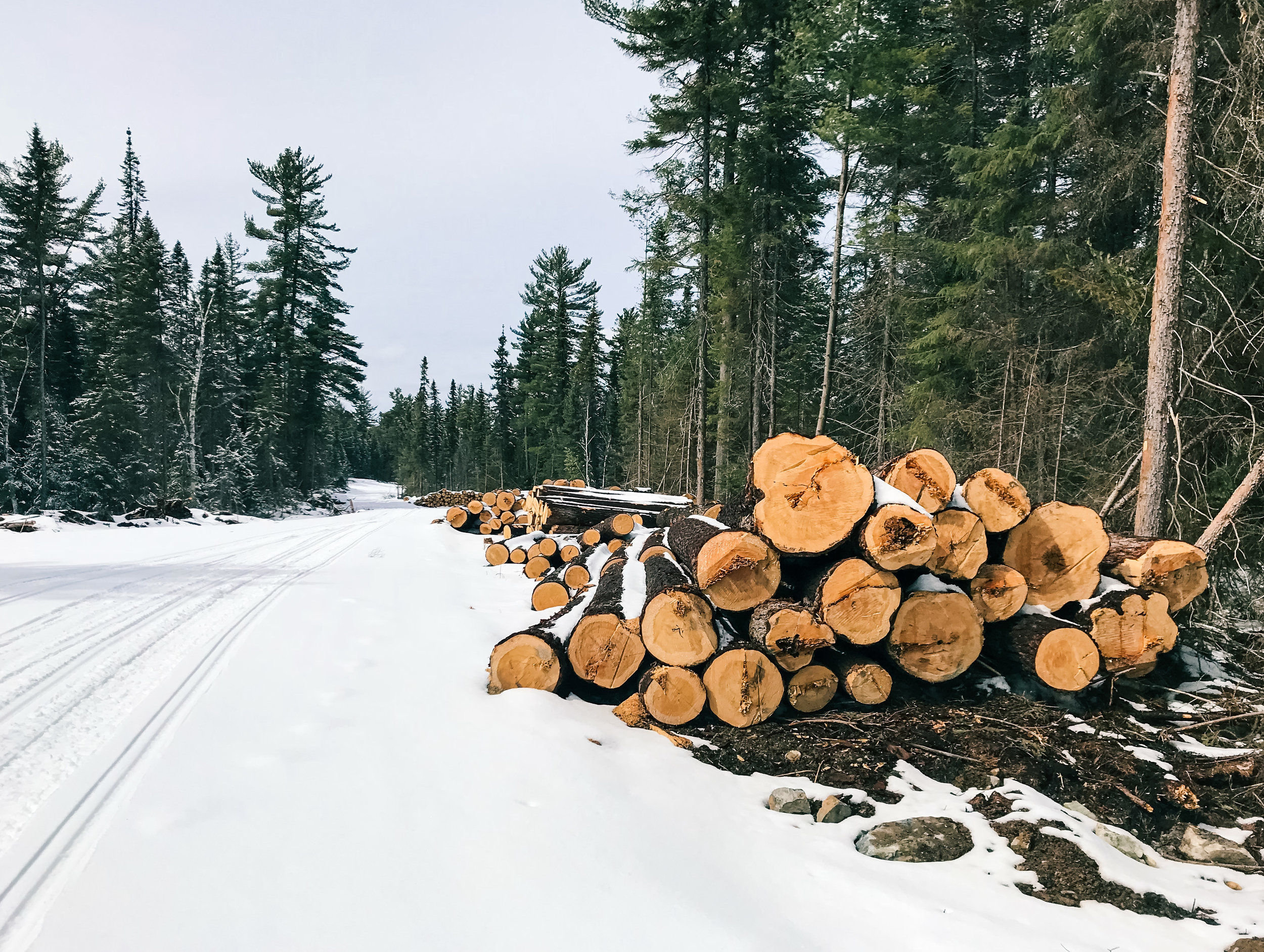 Road Construction at Twinkle Lake, April 12, 2018.