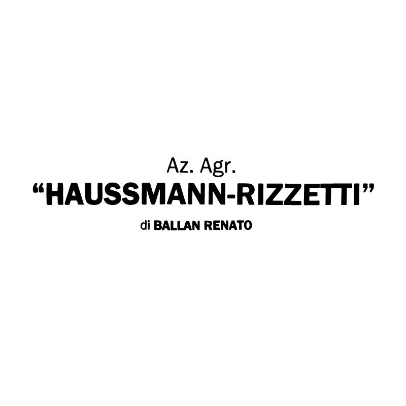 23_loghi_hausmann.png