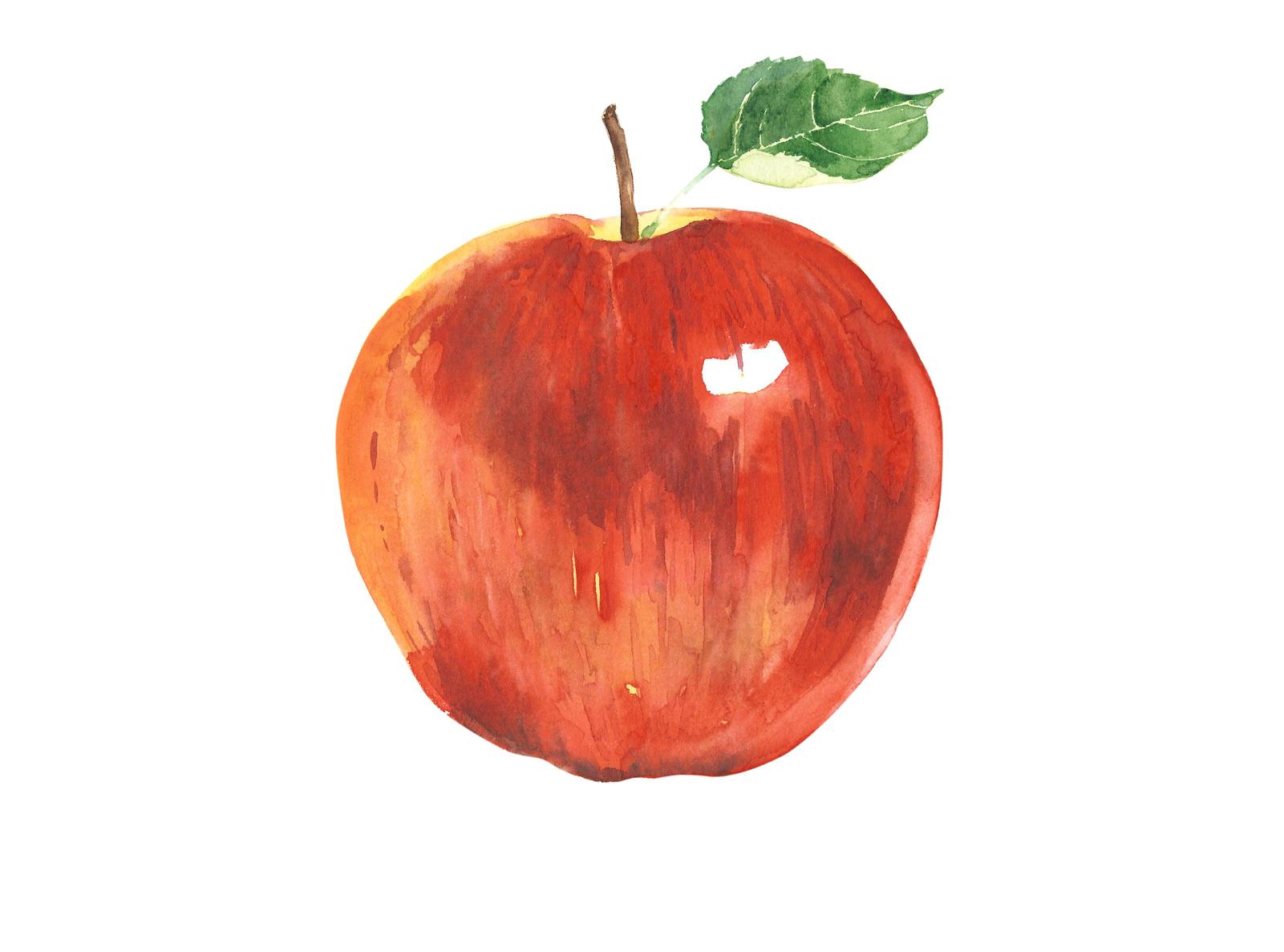kristin-lawless-apple.jpg