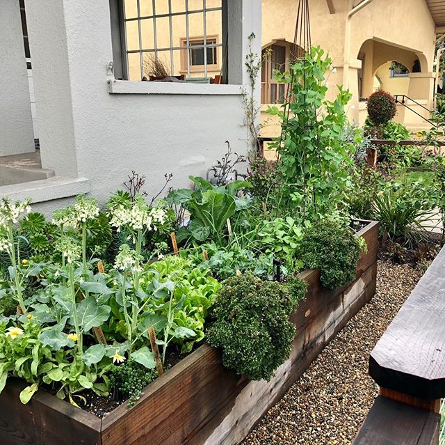 So you could grow 15 different crops in a beautiful raised bed or you could have a lawn 🤷🏻♀️