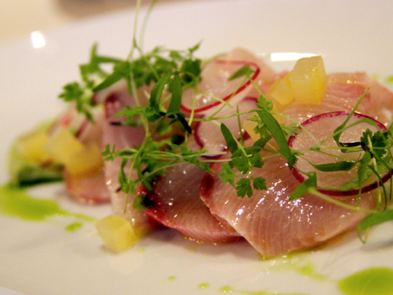 Crane Bay® Katsu Hamachi Crudo served with a scattering of pea vines and sliced radishes                             with chunks of daikon, stone fruit and avocado