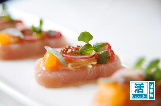 Katsu Hamachi Crudo of blood orange, radish, marinated fennel and yuzu citronette