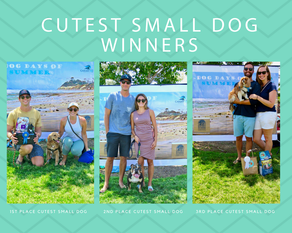 1st Place Cutest SMall Dog.jpg