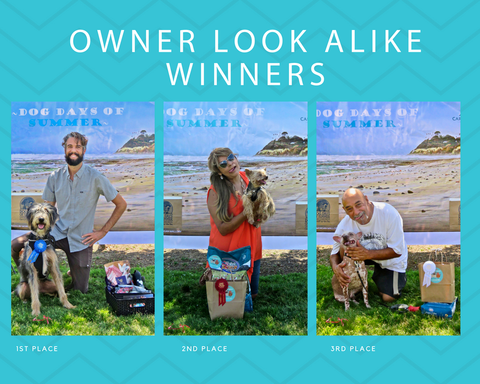 dog days of summer dog contest(1).jpg