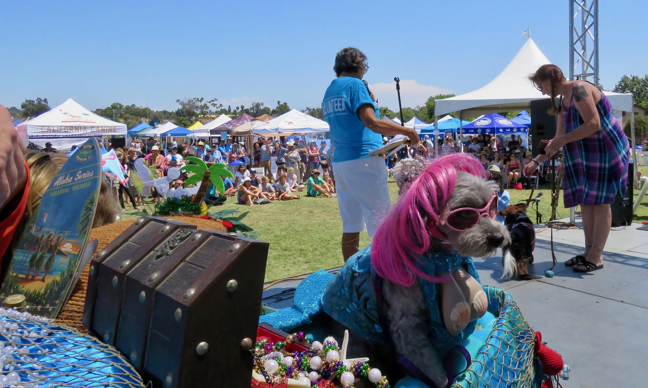 DogContest_Crowds_MM_0247.jpg