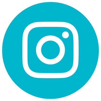 team_social_buttons_Instagram.png